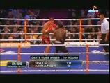 LUCIAN BUTE VS EDISON MIRANDA   -17-04-2010-full fight-KO