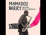 Mamadou Barry-Snook