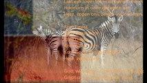 Afrikaans volkslied 'Nkosi Sikele Africa'