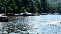 Dog Long Jumping into Water (Dock Jump)