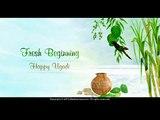 Festibration | Celebrating Festivals of India | ZeebraCross