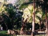 Video Crociera ai Caraibi