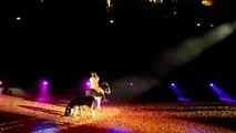 Esel! Apassionata 2010 Zauber der Freiheit zum lachen
