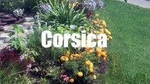 (HD1316) 3 minutes in Calvi, Corse - Corsica, France - GoPro Hero