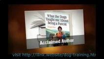 Dog Training Tricks Teach Dog Tricks