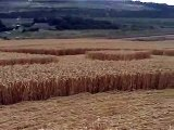 Crop Circle at Nashenden Farm, Kent  2004