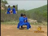 Shaolin 6 combats kung fu liu he quan duet  form 4 of 4