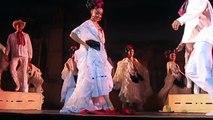 ''La Bamba'' de Veracruz, Ballet Folklorico de Mexico de Amalia Hernandez