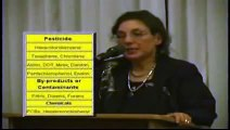 Codex Alimentarius - The End Of Healthy Food, Minerals and Vitamins
