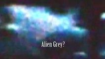 Noticias de última hora Avistamiento OVNI extranjero gris En Enorme Fying platillo increíble Video!