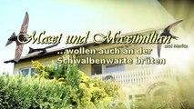 """""""Maxi und Maximilian"""" Mauersegler (Apus apus)"""