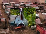 Wrecked Vintage Muscle cars,JunkYards,Barn cars! Chevy,Ford,GM,Chevelle,Mustangs,Corvettes