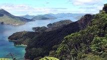 Nieuw Zeeland, het land bij uitstek voor het starten van een eigen bedrijfje...