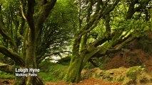 Ireland Travel | West Cork Travel | Irish Travel | Ireland Travels | Ireland Holiday | Ireland Blog