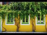 Grèce - Greece 2008 : Kefalonia - Zakynthos (Zante) Ionian islands