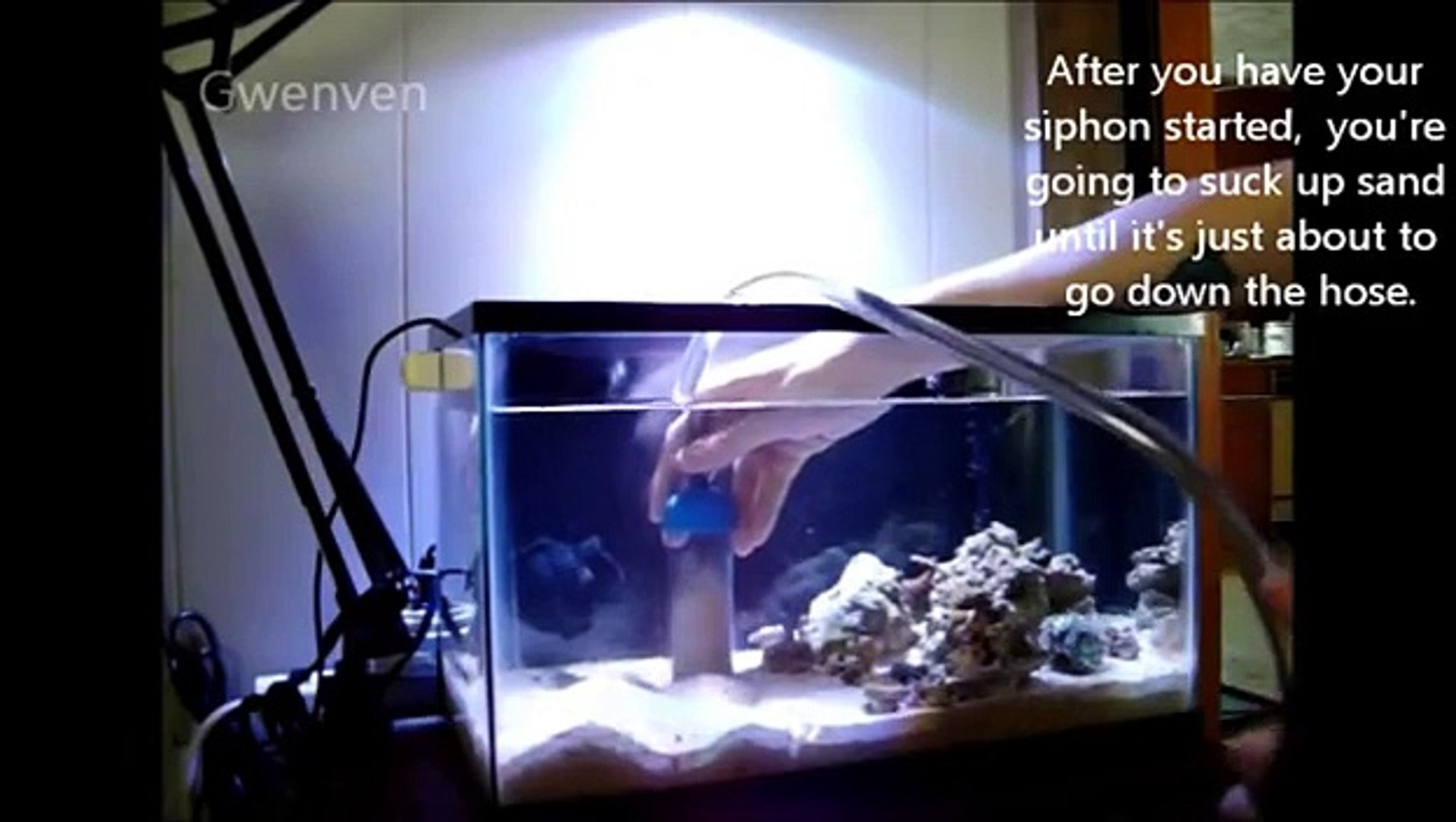 How To Clean A Fine Sand Bed In A Reef Aquarium Video Dailymotion