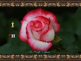 İzzet ALTINMEŞE *Hele Yâr Yâr Zâlim Yâr* (3)