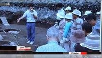 Japan: Salvaging Radiation-Contaminated National Treasures