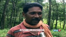Sri Lankan Tamils work as bonded labours in Kerala rubber plantation | Tamil Nadu | News7 Tamil