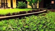 Hotel Amazon Bed and Breakfast - Leticia, Amazonas, Colombia