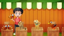 Pazara Gidelim Bir Tavuk Alalım - Çocuk Şarkısı