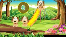 Baw się i Ucz: Liczenie Zwierząt Domowych i Plac Zabaw - Baw się z nami