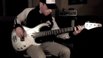 RHCP - Around the World [Bass Cover] with a Modulus Flea Bass Funk Unlimited [by Miki Santamaria]