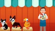 PIOSENKA- Zwierzęta na Farmie Wystawa - Baw się z nami