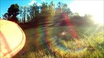 Chasse beagle : Saison 2013/2014: lapin, renard,...