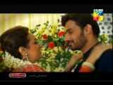 Tum Mere Pas Raho OST Hum Tv Drama Title Song by Zeb Bangash