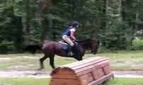 Kina XC Schooling at the Carolina Horse Park - Sold -