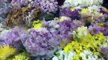 Explore flower market in bangkok  Pak Klong Talat  a big wholesale flowers market