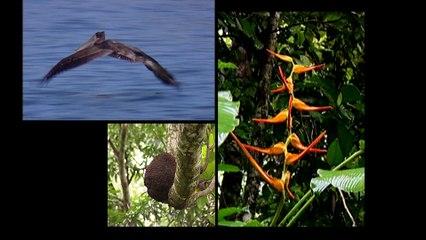 COSTA RICA-EP27