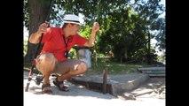 Рыбалка на карася на даче!Карась, линок,красноперка!Fishing!