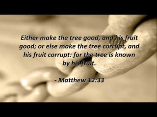 Bible Quotes #21