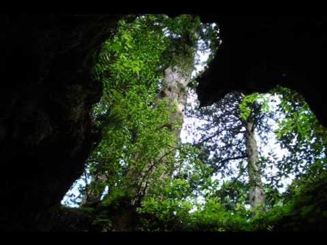 Cave No 1