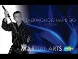 Taekwondo Hapkido Academy