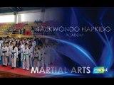 Taekwondo Hapkido Academy Tiger  - Kids Class