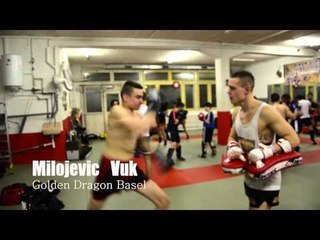 Golden Dragon Videos - VUK