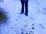 boubou dans la neige