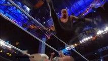 CM Punk vs. The Undertaker Highlights - HD Wrestlemania 29