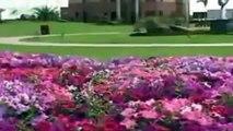 Visit Pakistan 2011 , Tour Pakistan , Best Place to visit , Tourism of Pakistan