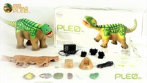 Pleo rb - What's in the box
