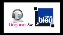 Cours de langues en visioconférence sur Lingueo
