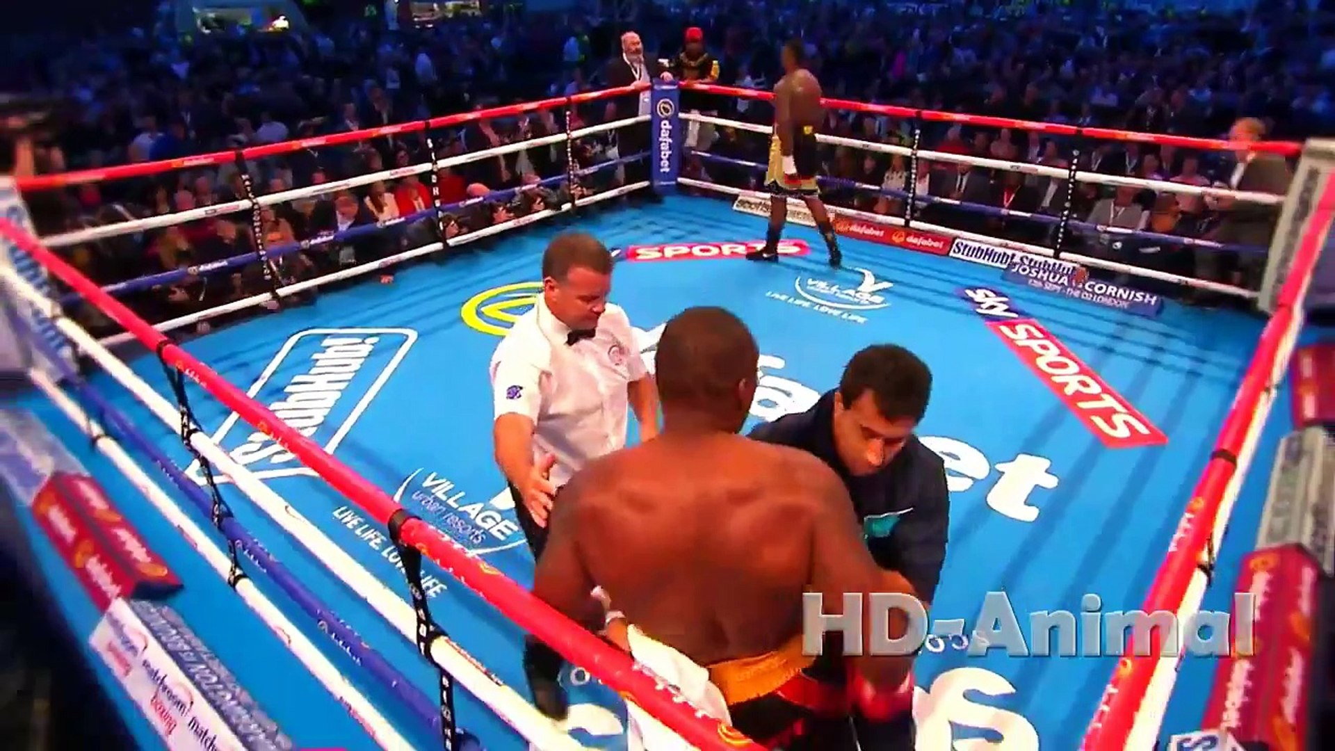 Best Boxing Knockouts   Best Boxing Fights   Best boxing record