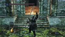 Dark Souls II Scholar of the First Sin - easy farming souls