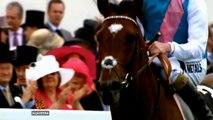 Posljednja trka neporaženog konja - Al Jazeera Balkans