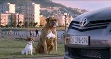 Смешная реклама Toyota / Funny ads Toyota