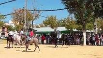 Romería de San Isidro 2010 - Carreras de Cintas a Caballo