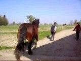 Quetty en longe avec Isa